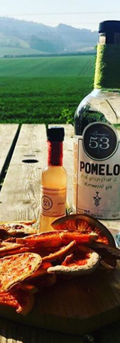 Pomelo in the Downs