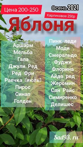 InShot_20210912_100258803.jpg