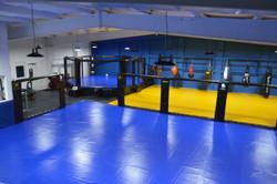 Higher Level MMA gym