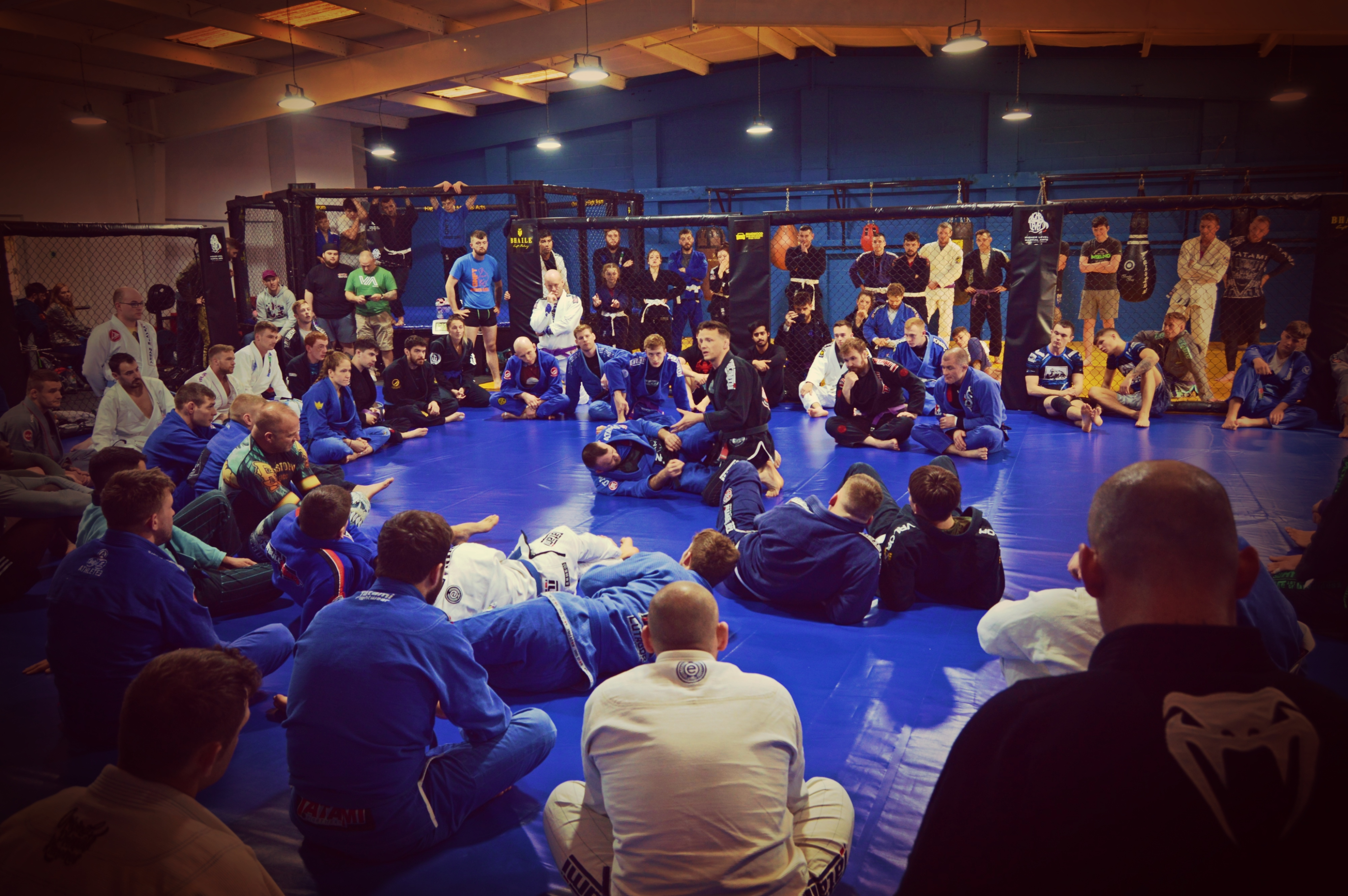 Higher Level MMA seminar