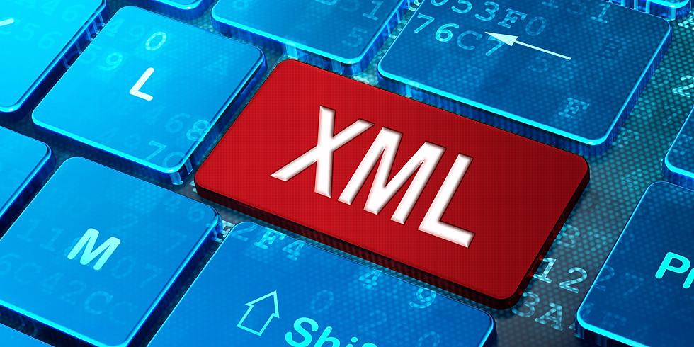 Taller sobre administración de los XML / Su importancia Fiscal, Financiera y Contable