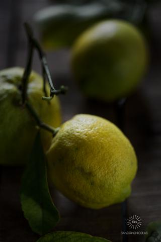 Citron feuille