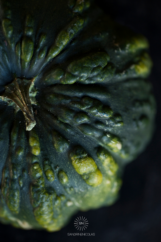 CourgeCloseUp