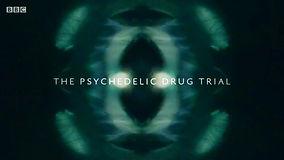 The Psychedelic Drug Trial BBC2 Avid Edi