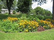 rain gardens, stormwater design, stormwater management