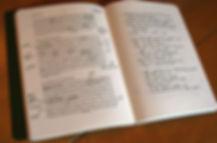 ESV Journalling my-luke.jpg