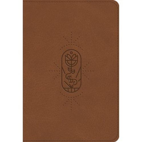 ESV Kids Bible compact