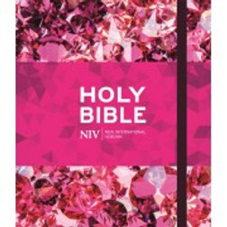 NIV Ruby Journalling