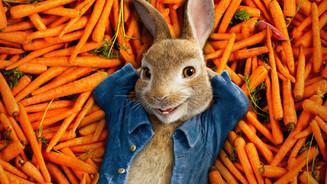 «Кролики, это не только ценный мех»