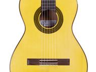 Guitarra-Semiconcierto-Frontal.png