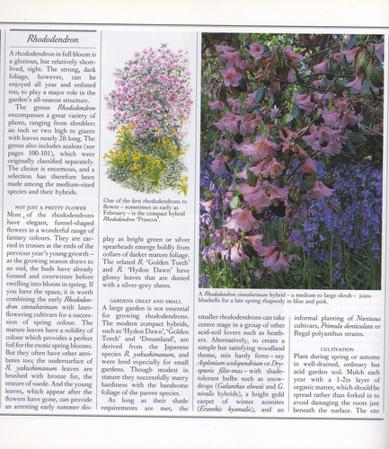 Contributing editor to Gardens for All Seasons, published  by Readers' Digest