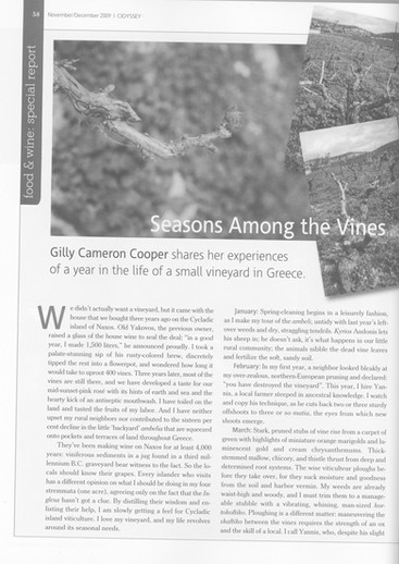 A year in the life of our vineyard