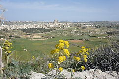 Gozo next town from Xaghra.jpg