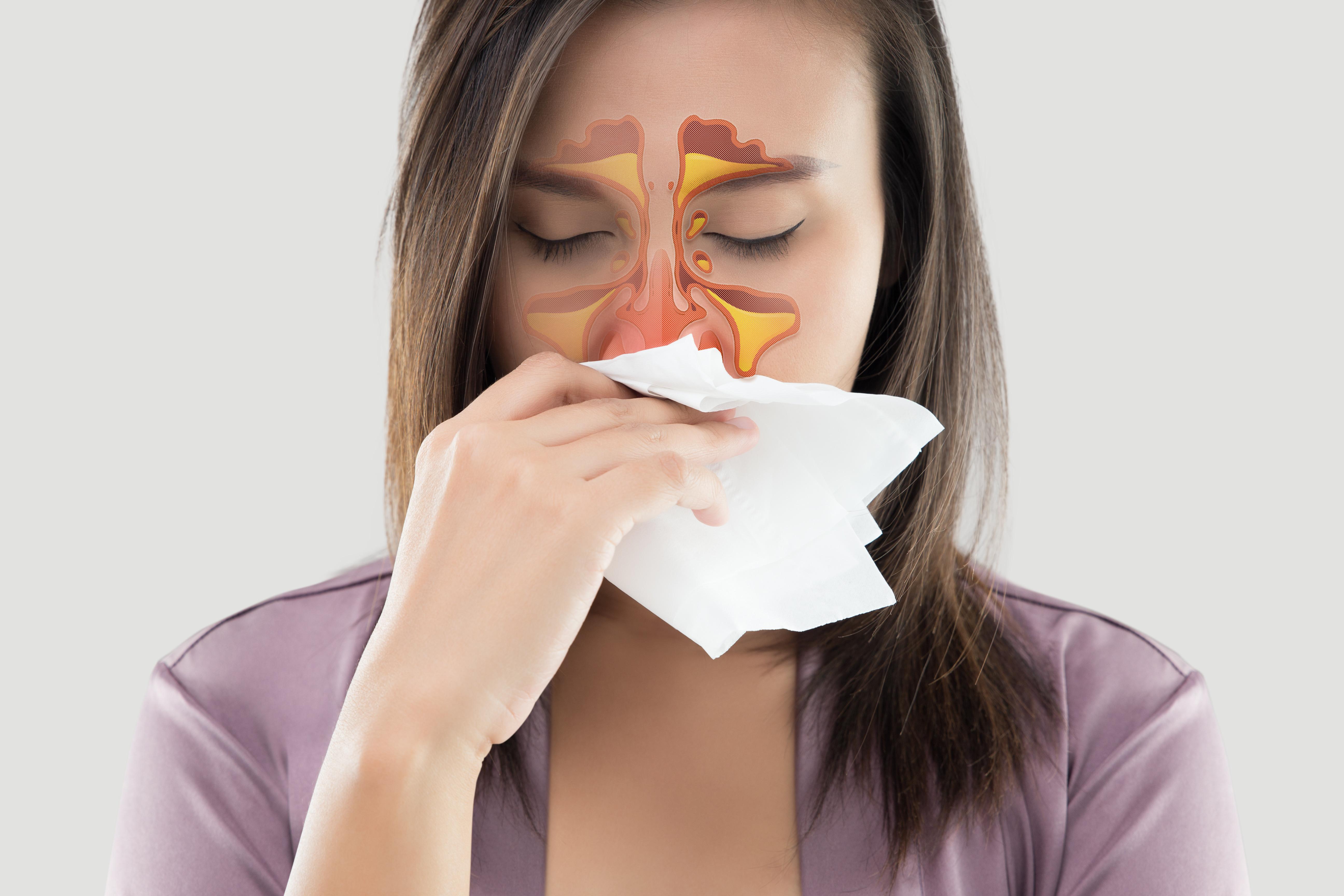 Rhinology ( Nose Problems )