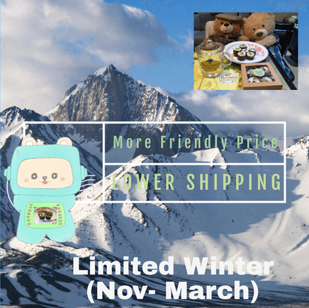 Lower shipping(Limited Winter)
