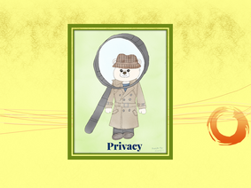 Detective Junior - Privacy -