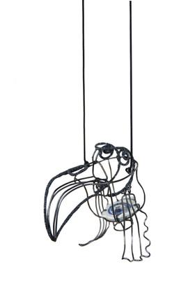 Pionus 鹦鹉