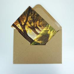fotokarten-dreamland-envelope.jpg