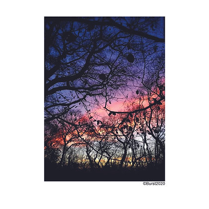 afterglow - Picture Card/ Postcard - printed on uncoated natural paper