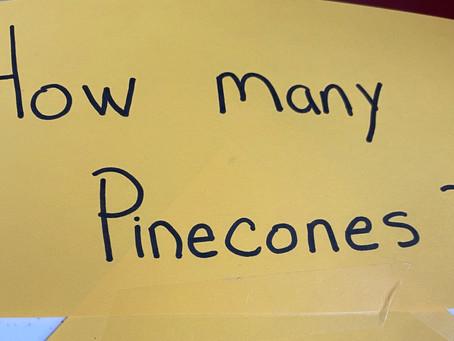 Fall Fun. Acorns, Pinecones, corn and an adventure!!!