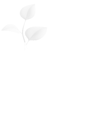 Class for new Christians | Potter's House Church Hamilton