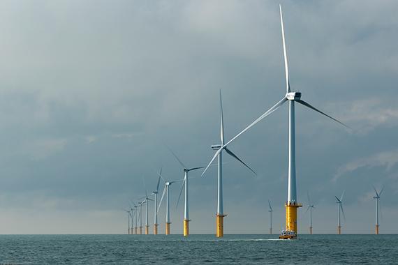 Parkwinds Belwind wind farm.tif