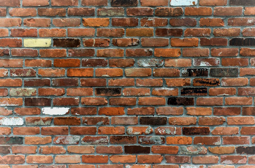 pexels-photo_edited.jpg