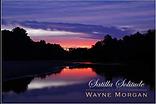 Wayne Morgan Solitude book.png