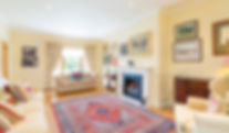 living room - view 2 - 6 Leopardstown Ri