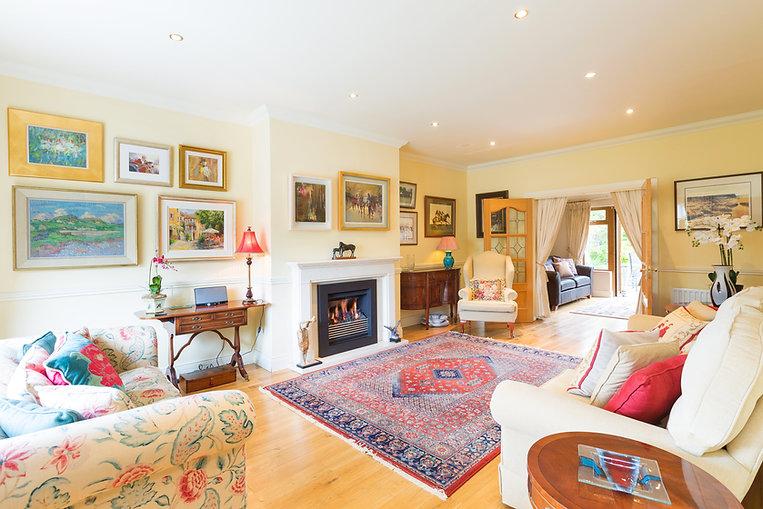 living room - view 1 - 6 Leopardstown Ri