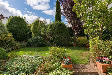 garden - view 2.jpg