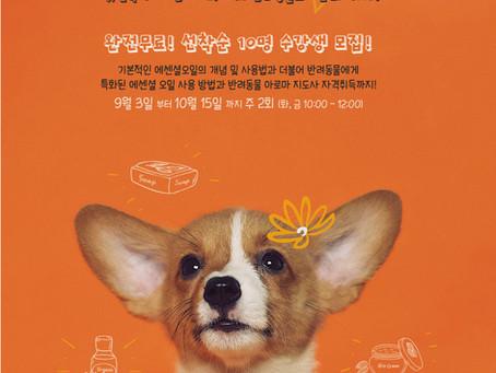반려동물을 위한 아로마 관리 수강생 모집