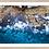 Thumbnail: bondi blues, nsw