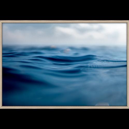limited edition sea