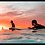 Thumbnail: basic sunsets sets