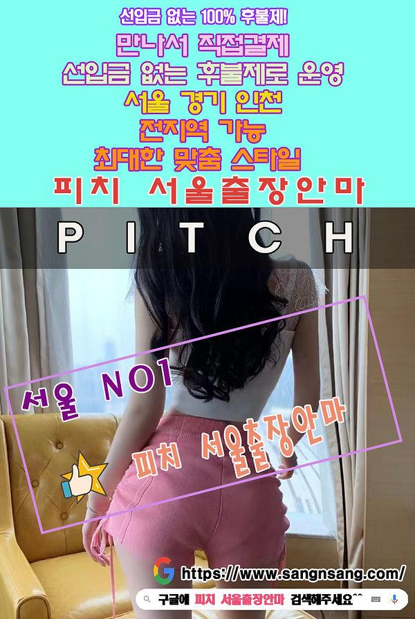 혜화동출장 | 혜화동출장안마 | 혜화동출장마사지 | 100%후불제 | 피치 서울출장안마