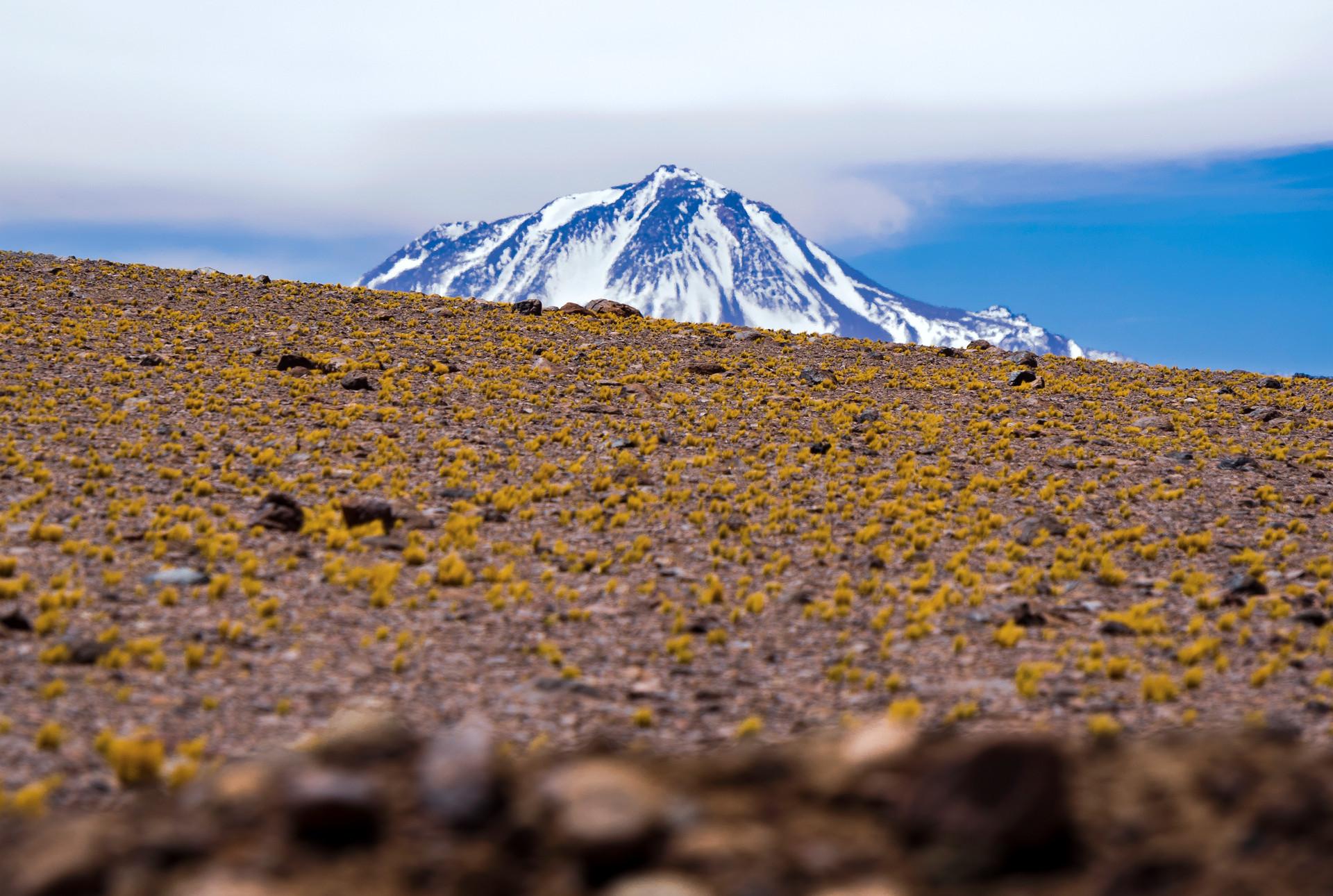 El complejo arqueológico inca del Volcán Llullaillaco, 6739 metros, Provincia de Salta, Argentina. (Fotografías de la campaña científica del año 2015)