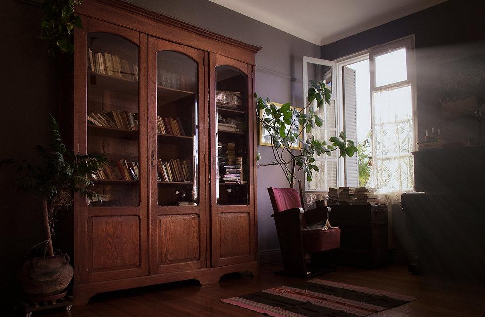 Biblioteca de Cortazar Ber Cornejo.jpg