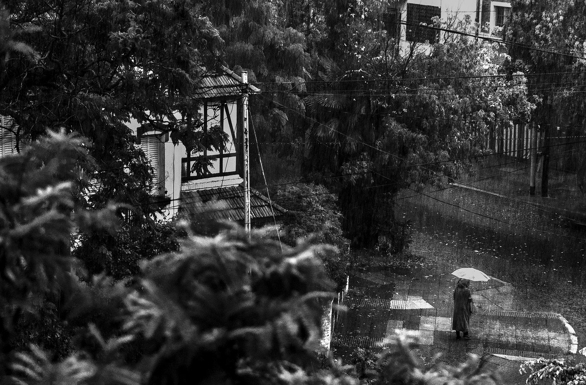 Siempre empezó a llover, fotografías desde Julio Cortázar. Buenos Aires (Fotografías y poema)