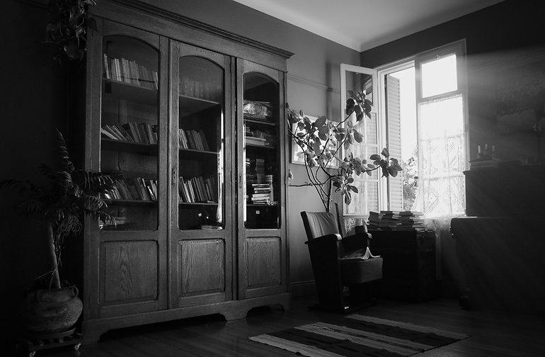 Biblioteca copia3000 px lc.JPG