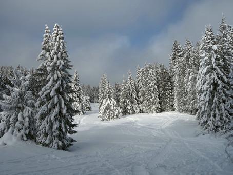 L'hiver des Alpes