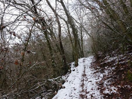 Paysages de neige au Grand Jouéret