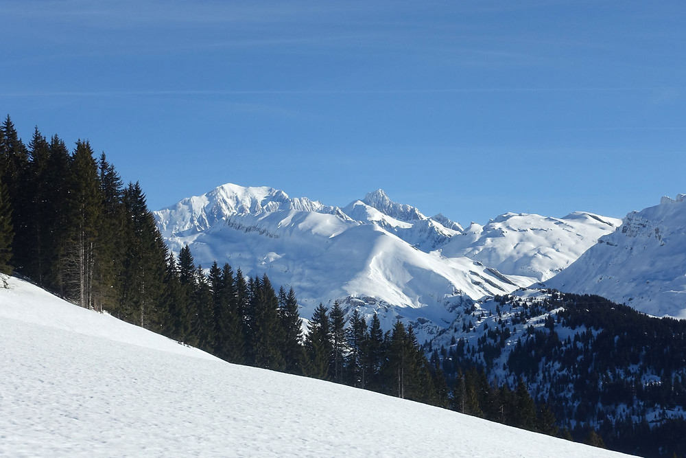Au fond le Mont-Blanc