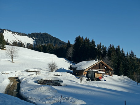 L'alpage des Avenières