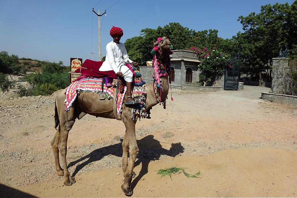 Rencontre sur la route de Jojawar