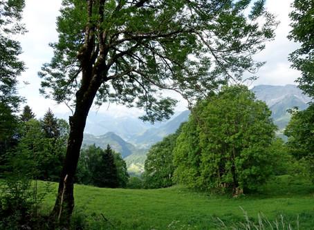 La Montagne de Sulens