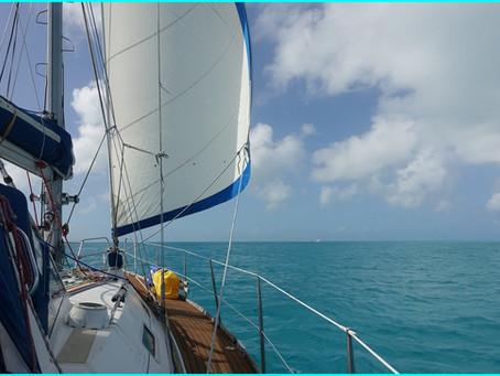 The Exumas ~ Gaulin Cay South l'île aux iguanes