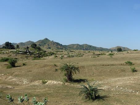 Dans les monts Aravalli les temples de Ranakpur