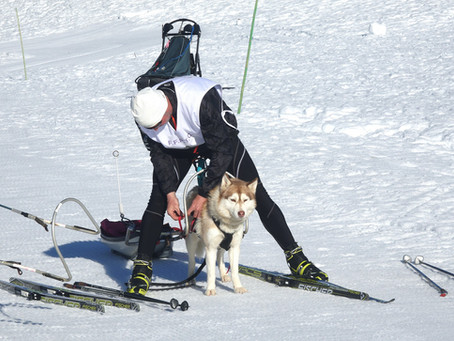 La Retordica ~ Ski-joering