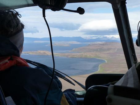 Terres Australes ~ Îles Kerguelen #2 Le Bras Jules Laboureur